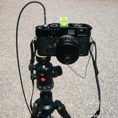 Leica M7 film camera